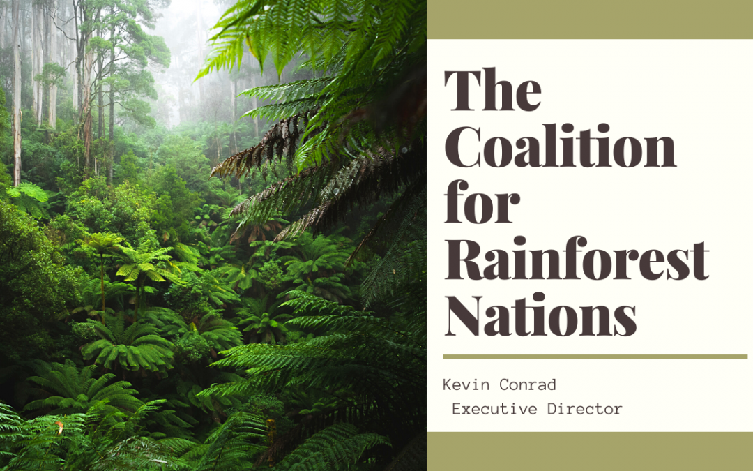 The Coalition for Rainforest Nations effectively fighting Climate Change