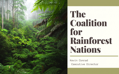 The Coalition for Rainforest Nations – Effectively fighting Climate Change